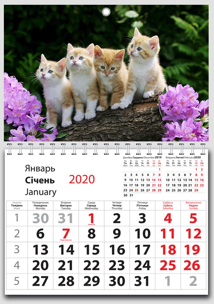 Квартальный календарь 3 в 1, 1 пружина, шапка